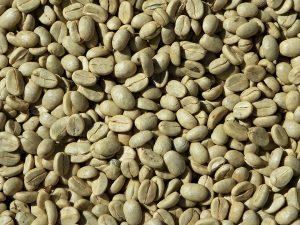 Leanbean reviews - ingredients - green coffee