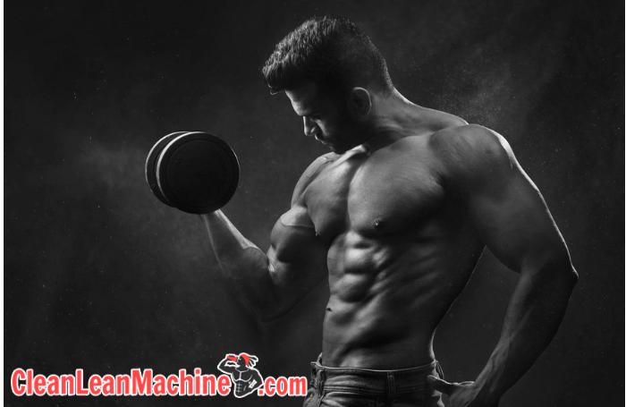 vegan fitness diet guide bodybuilder - maximum performance